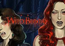 Wild Blood PlayNGo
